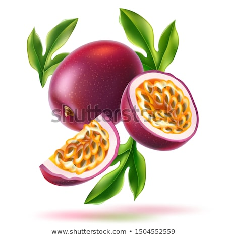 Passionfruit with Leaf, Exotic Juicy Fruit Vector Stock photo © robuart