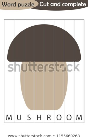 Rechtschreibung Wort Pilz Illustration Schule Hintergrund Stock foto © colematt