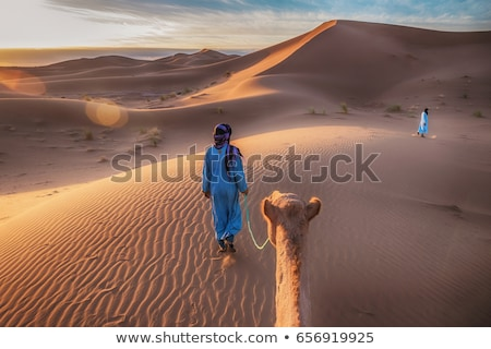 camelos · Árabe · pessoas · ferrovia · pôr · do · sol · ilustração - foto stock © colematt