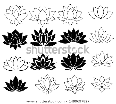 vintage · decorativo · establecer · negro · floral - foto stock © netkov1