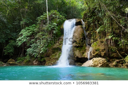 Beautiful little waterfall in tropical forest Stock photo © dashapetrenko