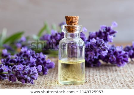 A bottle of lavender essential oil with fresh lavender twigs Stock photo © madeleine_steinbach