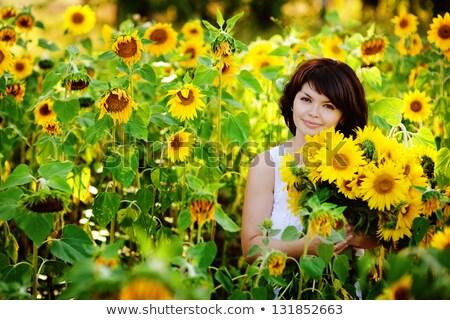 felice · donna · girasole · campo · estate · ragazza - foto d'archivio © dashapetrenko