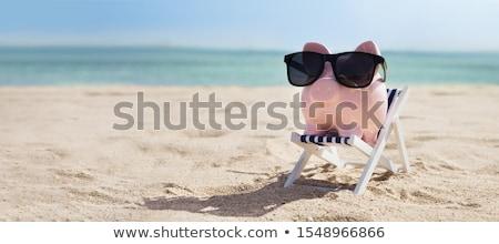 Rosa óculos de sol convés cadeira praia Foto stock © AndreyPopov