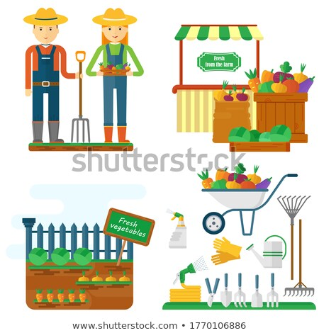 farmer sowing seeds into garden beds cartoon icon stock photo © robuart