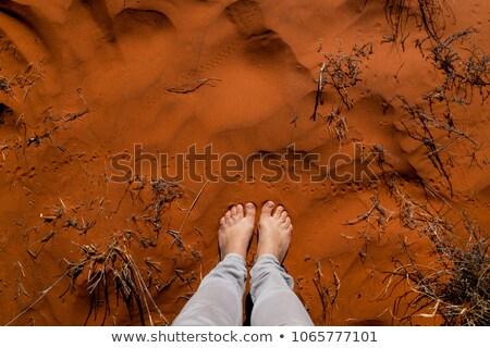 женщину австралийский пустыне глядя из песок Сток-фото © lovleah