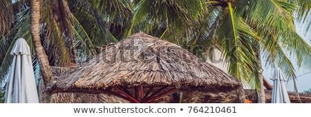 BANNER, Long Format Beautiful tropical beach witn straw umbrella and palm. Straw umbrella and palm a Stock photo © galitskaya