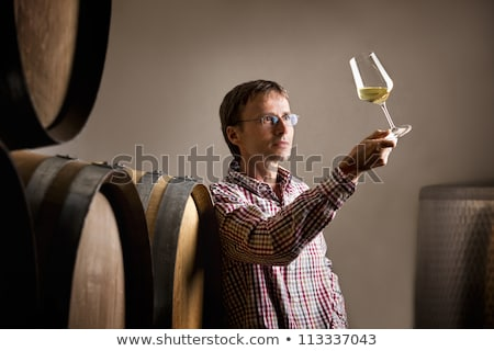 Winemaker analyzing a glass of white wine in cellar. Stock photo © lichtmeister
