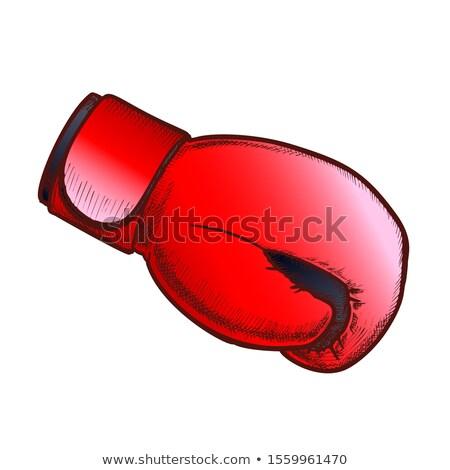 боксерская перчатка спорт ткань вид сбоку цвета вектора Сток-фото © pikepicture