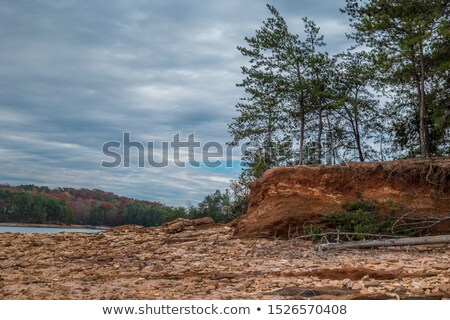 seca · terra · rachado · lago · textura · abstrato - foto stock © freelancer