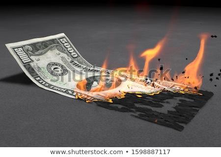 Dolar yanan nakit dikkat görüntü Stok fotoğraf © albund