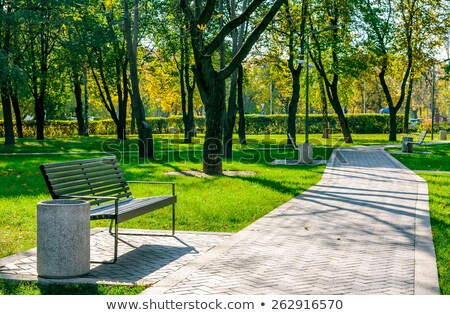 Sunny alley in the city park in spring, nature and outdoor landscape Stock photo © Anneleven