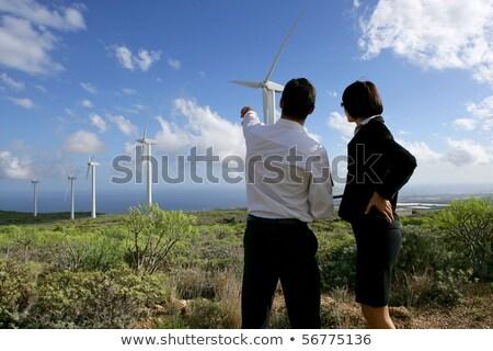 Wind turbine 30 Stock photo © LianeM