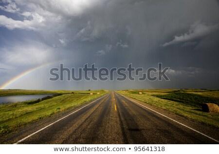 pradaria · saskatchewan · Canadá · paisagem · fundo - foto stock © pictureguy