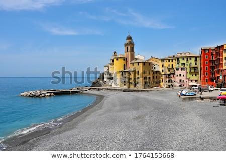 Camogli houses Stock photo © Antonio-S