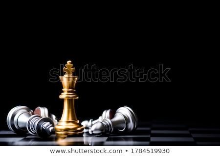 Rey del ajedrez pie negocios mesa lucha blanco Foto stock © ozaiachin
