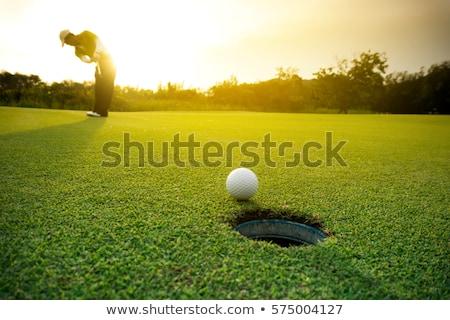 Campo de golfe verde verão tempo pormenor Foto stock © gewoldi
