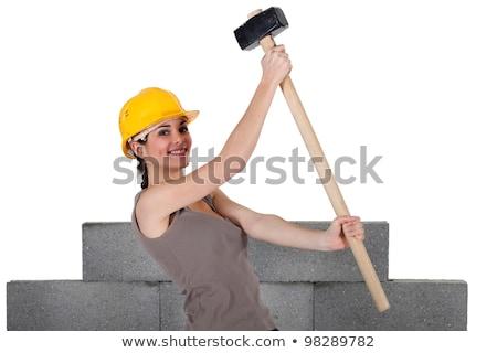 építész · emel · üres · hely · épület · férfi · építkezés - stock fotó © photography33
