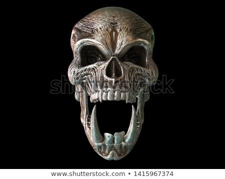 A big scream stock photo © antonprado