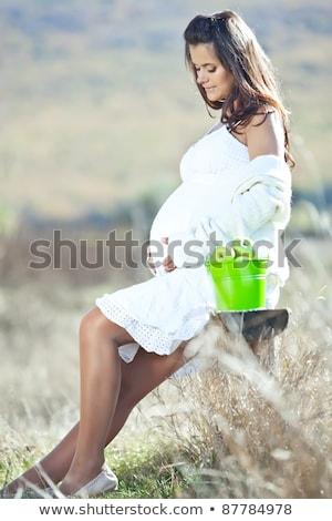 Foto d'archivio: Bella · donna · incinta · rosso · autunno · esterna · donna