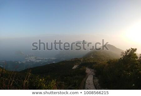Early Morning on a Mountrain trail Stock photo © wildnerdpix