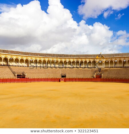 seats of bullfight arena sevilla spain stock photo © neirfy