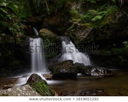 todtnau waterfall detail stock photo © prill