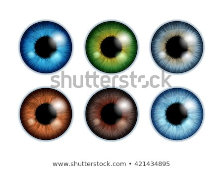 Set of eyeballs on white background Stock photo © fixer00