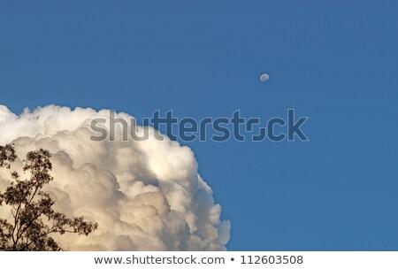 Weather Science Meteorology Towering Cumulus Cloud Bank With Moon Stok fotoğraf © Sherjaca