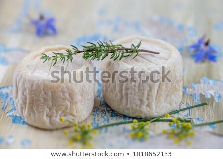Сыр из козьего молока продовольствие белый открытых белом фоне сырой Сток-фото © cynoclub
