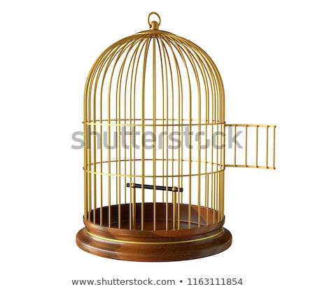 boş · kuş · kafesi · kapı · yalıtılmış · beyaz - stok fotoğraf © gavran333