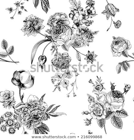 rosas · preto · natureza · morta · amor · feliz · natal - foto stock © nuttakit