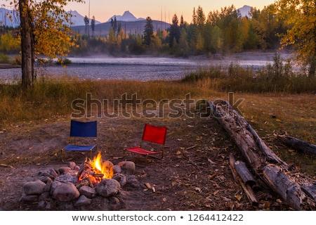 első · hó · erdő · hegyek · fa · fa - stock fotó © billperry
