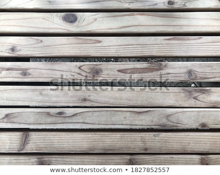 old wooden bench stock photo © viva