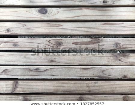 Vecchio legno panchina erba verde primavera stagione Foto d'archivio © Viva