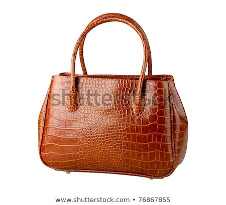 marrom · elegante · crocodilo · couro · bolsa · isolado - foto stock © ruslanomega