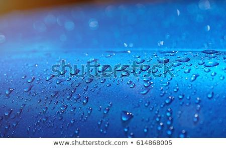 Vízcseppek autó test tökéletes esőcseppek egzotikus Stock fotó © TheFull360