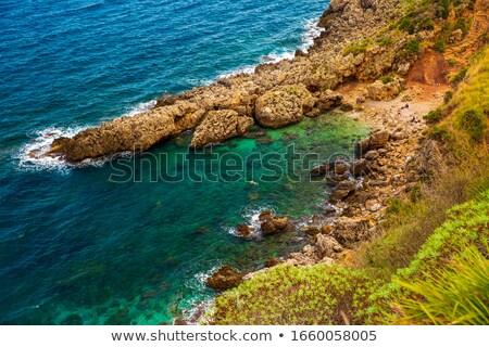 Beach with coastal flora Stock photo © lovleah