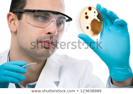 Scientist observing petri dish. Stock photo © kasto