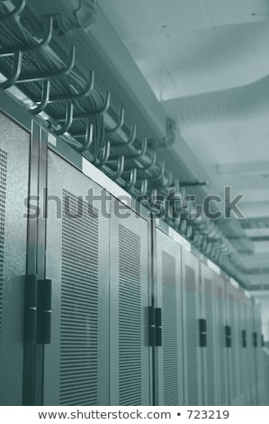 Datacenter racks and overhead cable management Stock photo © leetorrens