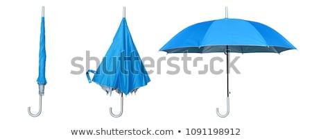 Kék esernyő izolált fehér eső sétál Stock fotó © g215