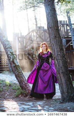 principessa · bacio · rana · prince - foto d'archivio © godfer