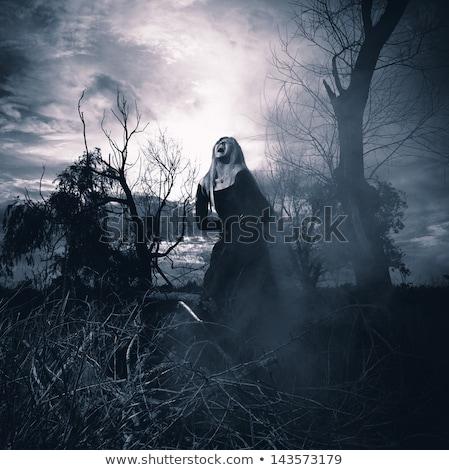 Schreeuwen gothic vrouw hand gezicht mode Stockfoto © Nejron