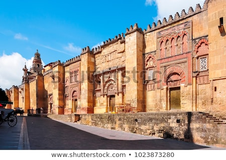 Cordoba Great Mosque Cathedral Stock photo © vichie81