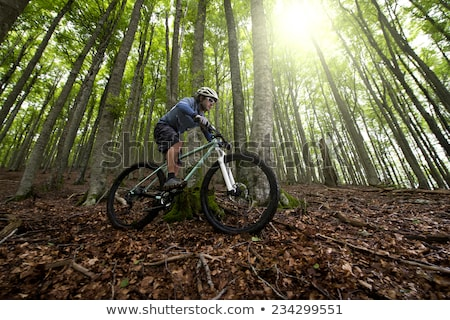 mountain biking in the forest stock photo © tilo