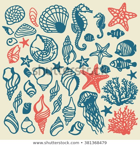 Underwater banners with shell and tropical fish, vector Stock photo © carodi