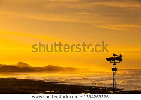 view of the bamburgh castle in a spectacular sunset stock photo © capturelight