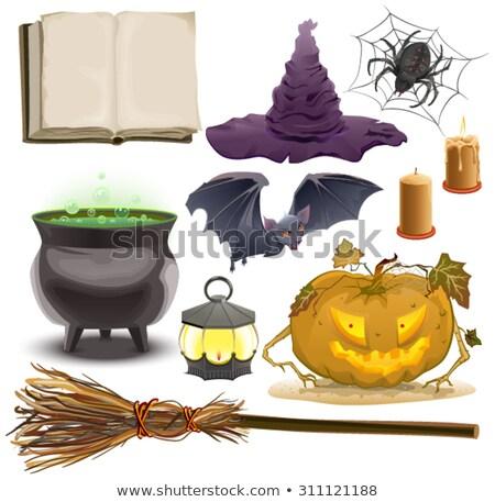Szett halloween tárgyak kellékek sütőtök lámpás Stock fotó © orensila