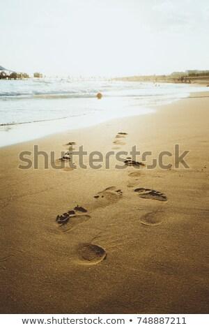 adımlar · okyanus · gri · taşlar · pembe · mavi - stok fotoğraf © deyangeorgiev