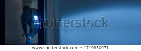 Thief With Flashlight Trying To Break Office Door Stock photo © AndreyPopov